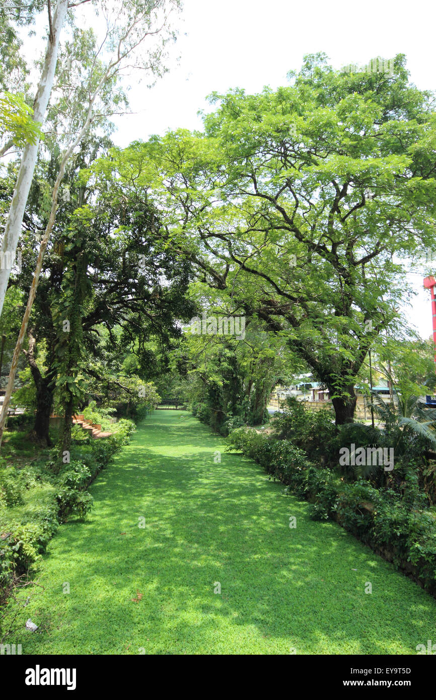 Muppalam, Alleppey, Kerala, India Immagini Stock