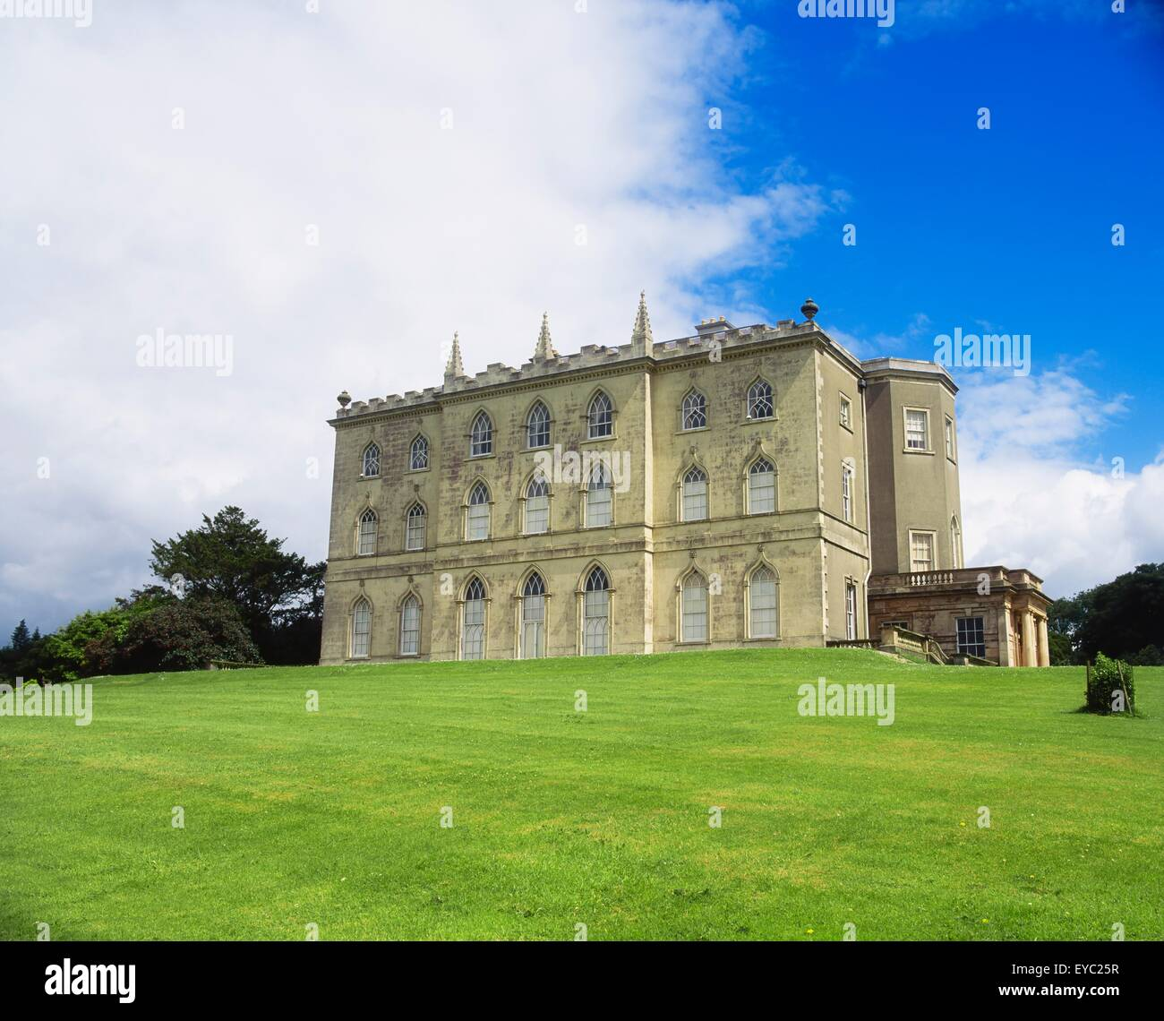 Castle Ward, Co Down, Irlanda, facciata gotica Immagini Stock