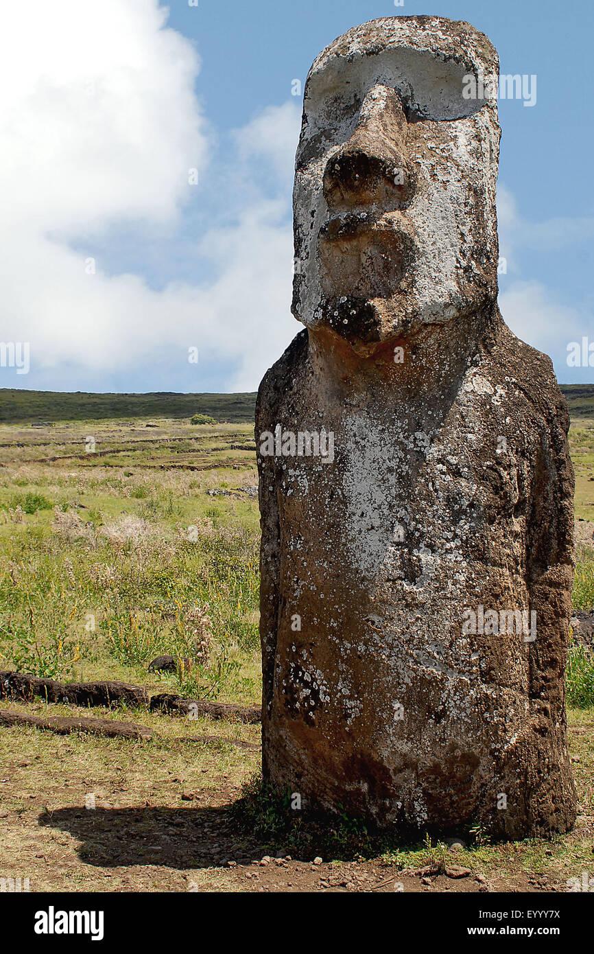 Moai statua, Cile, Parco Nazionale di Rapa Nui Immagini Stock
