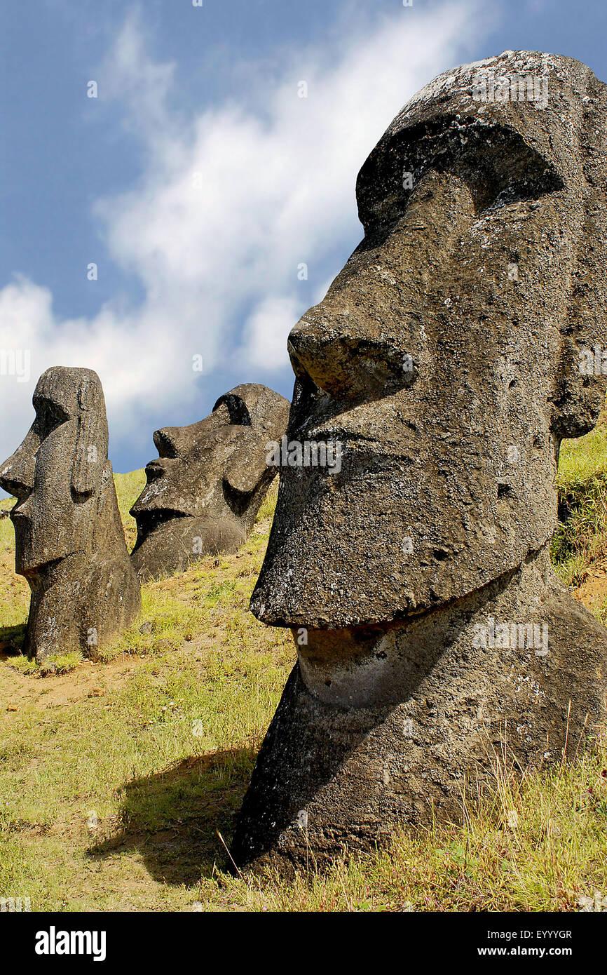 Moai statue, Cile, Parco Nazionale di Rapa Nui Immagini Stock