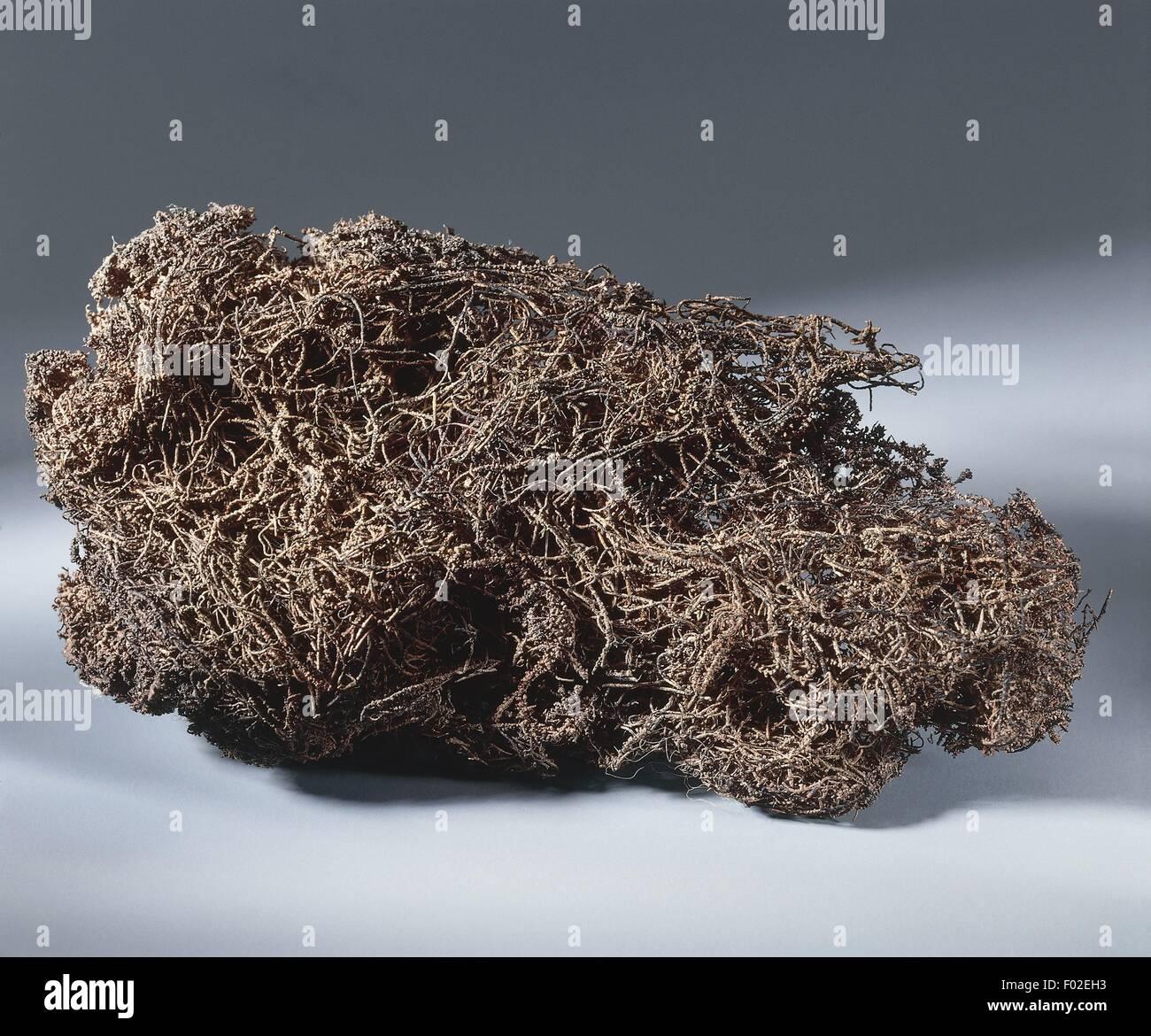 Minerali di rame (Cu). Immagini Stock