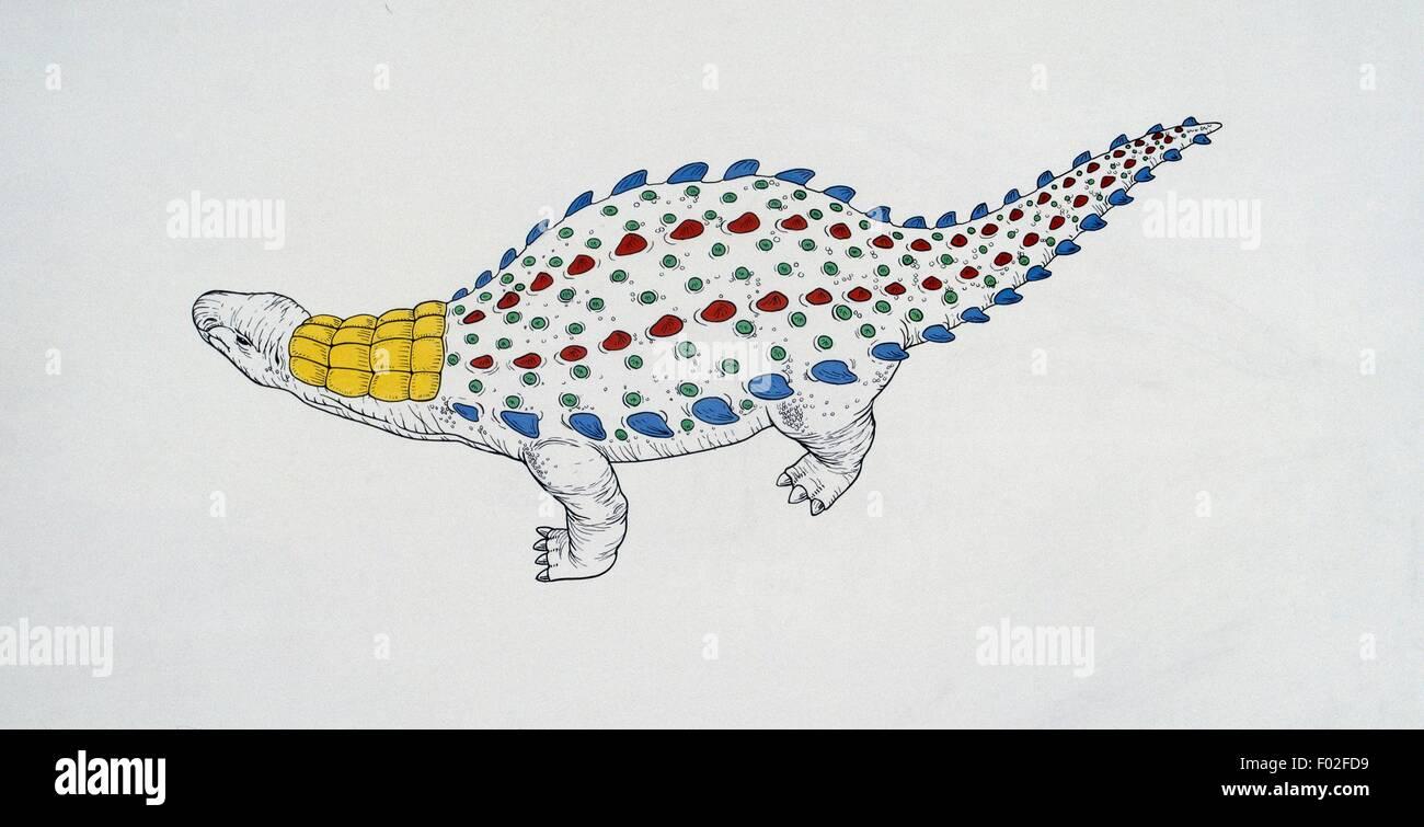 Schema della corazza di Dracopelta zbyszewskii, Nodosauridae, Late Jurassic. Illustrazione di Robin Carter. Immagini Stock