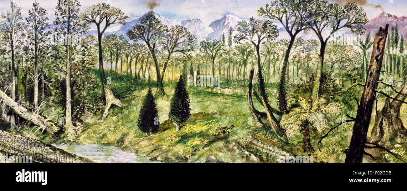 Foresta del periodo Carbonifero. Disegno. Immagini Stock