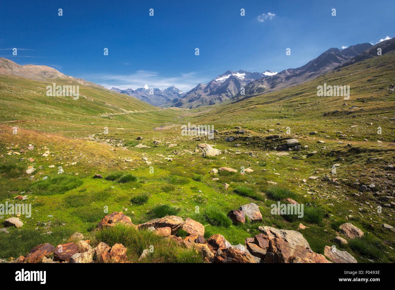 Il Parco Nazionale dello Stelvio e il Passo Gavia, Valfurva, Alpi, Italia Foto Stock