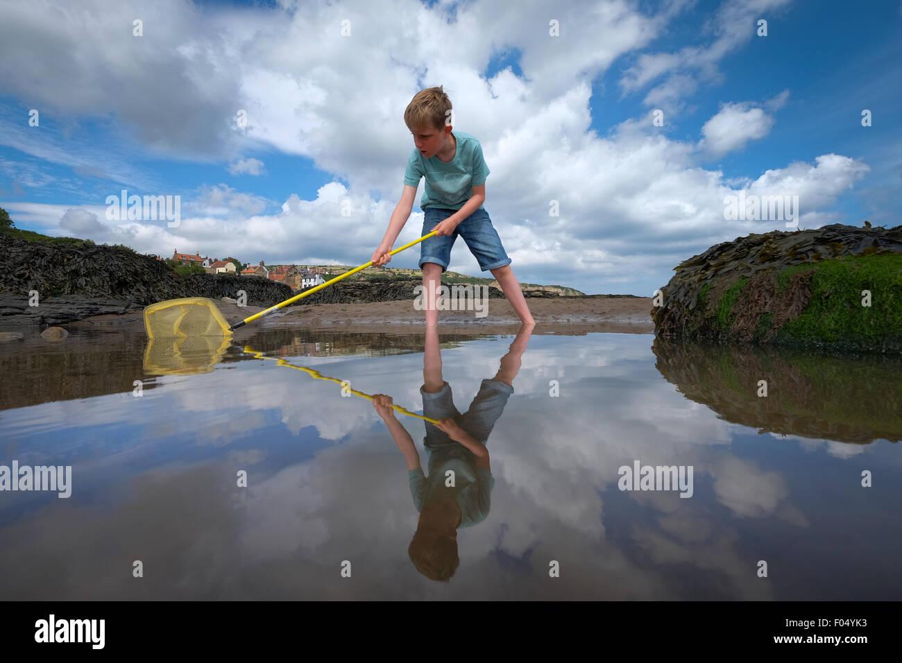 Un bambino con una rete da pesca cerca di pesce in un rock pool a Robin Hood's Bay beach nello Yorkshire, Regno Immagini Stock