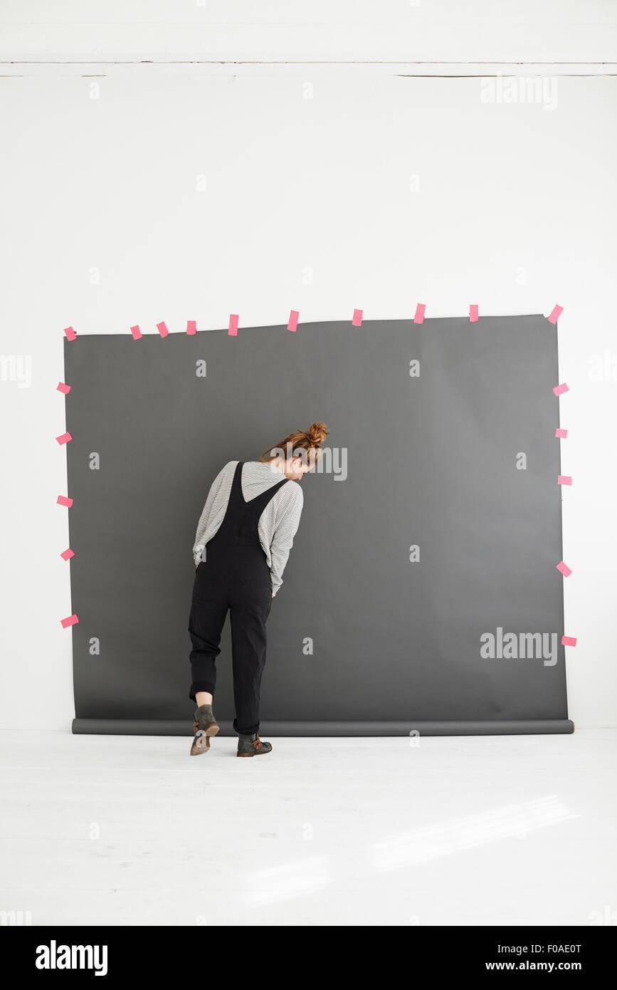 Donna di fronte a uno sfondo di fotografi, vista posteriore Immagini Stock