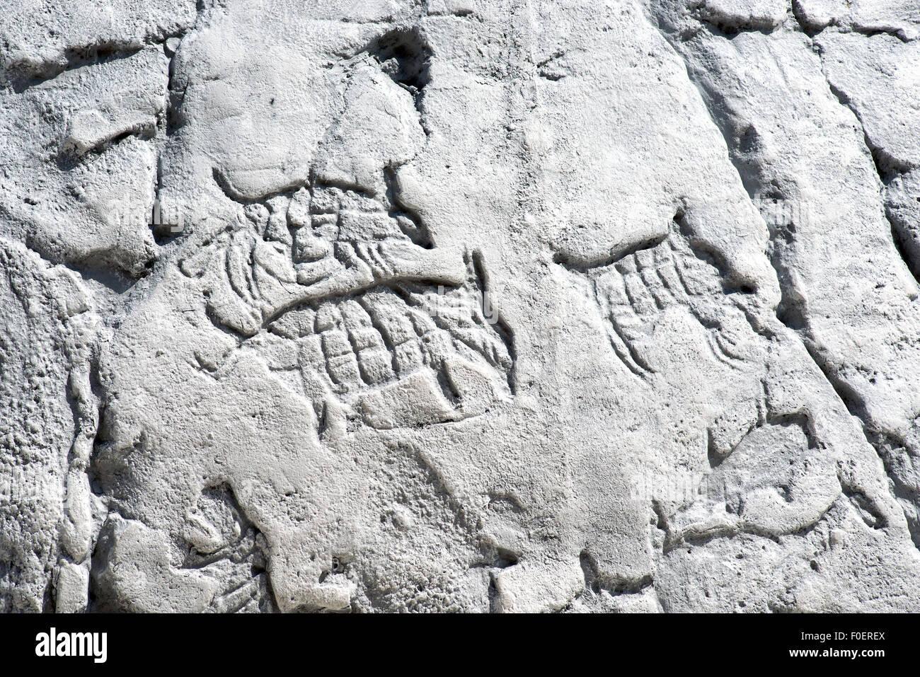 Opere d'arte primitiva su una roccia, animali e simboli sulla pietra bianca Immagini Stock