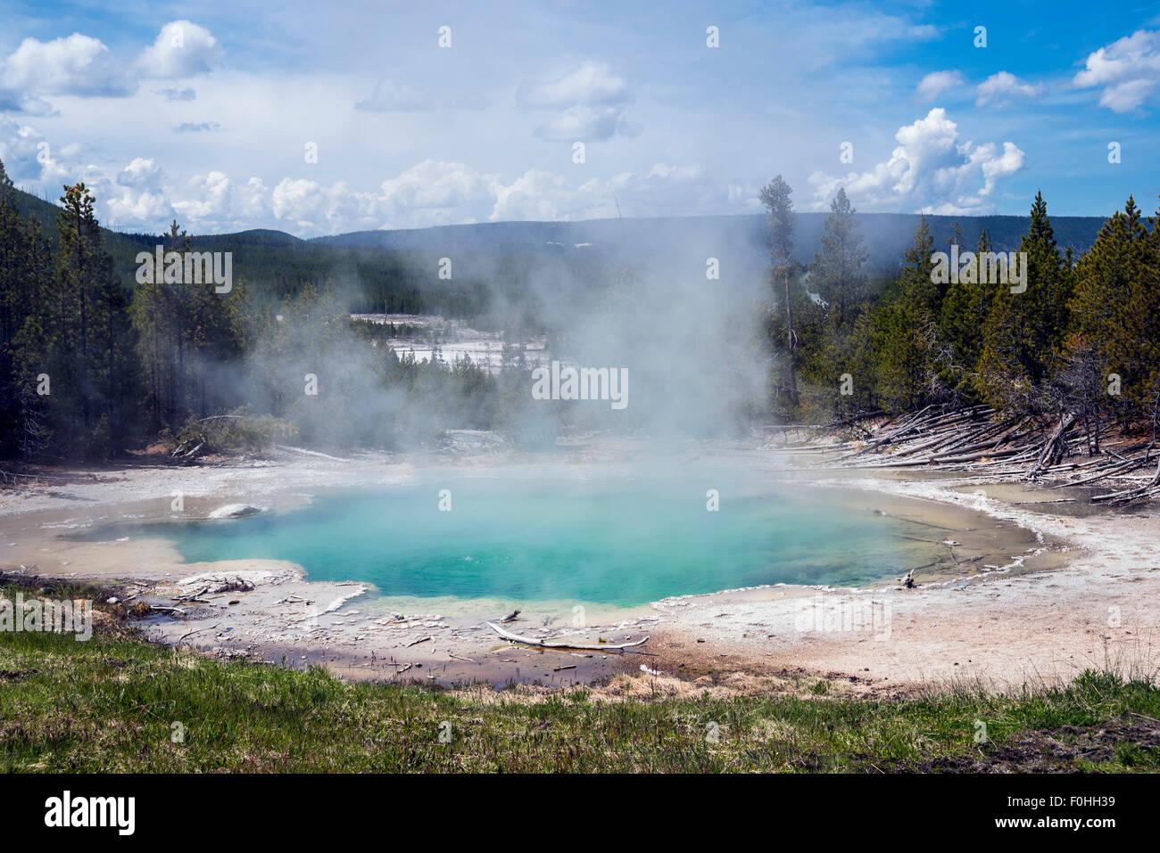 Piscina nella molla di smeraldo - primavera calda situato in Norris Geyser Basin del Parco Nazionale di Yellowstone.k, Immagini Stock