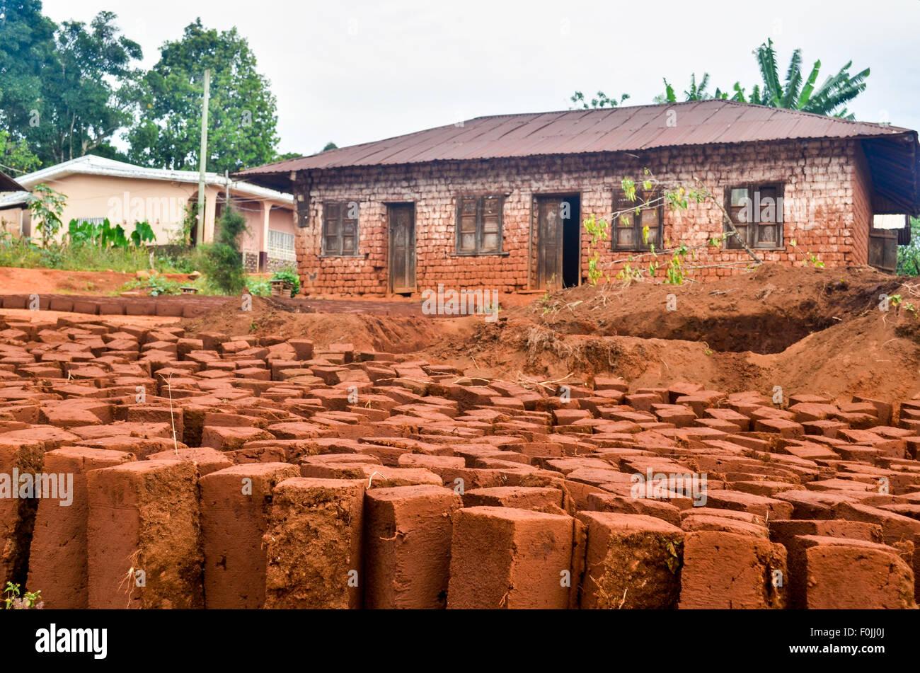 Case Di Mattoni Di Fango : Mattoni di fango essiccazione per costruire case in camerun foto