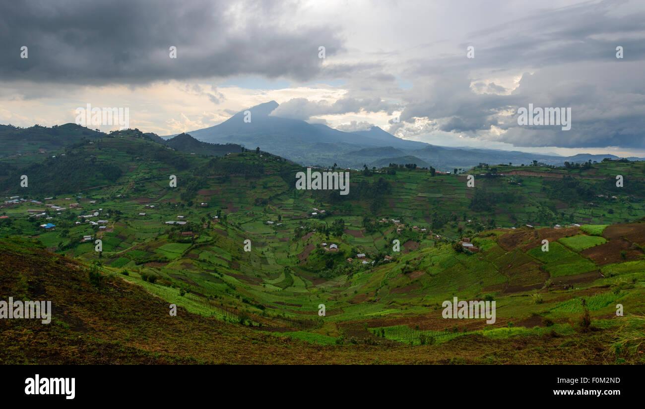 Montagne Virunga, Uganda, Africa Immagini Stock