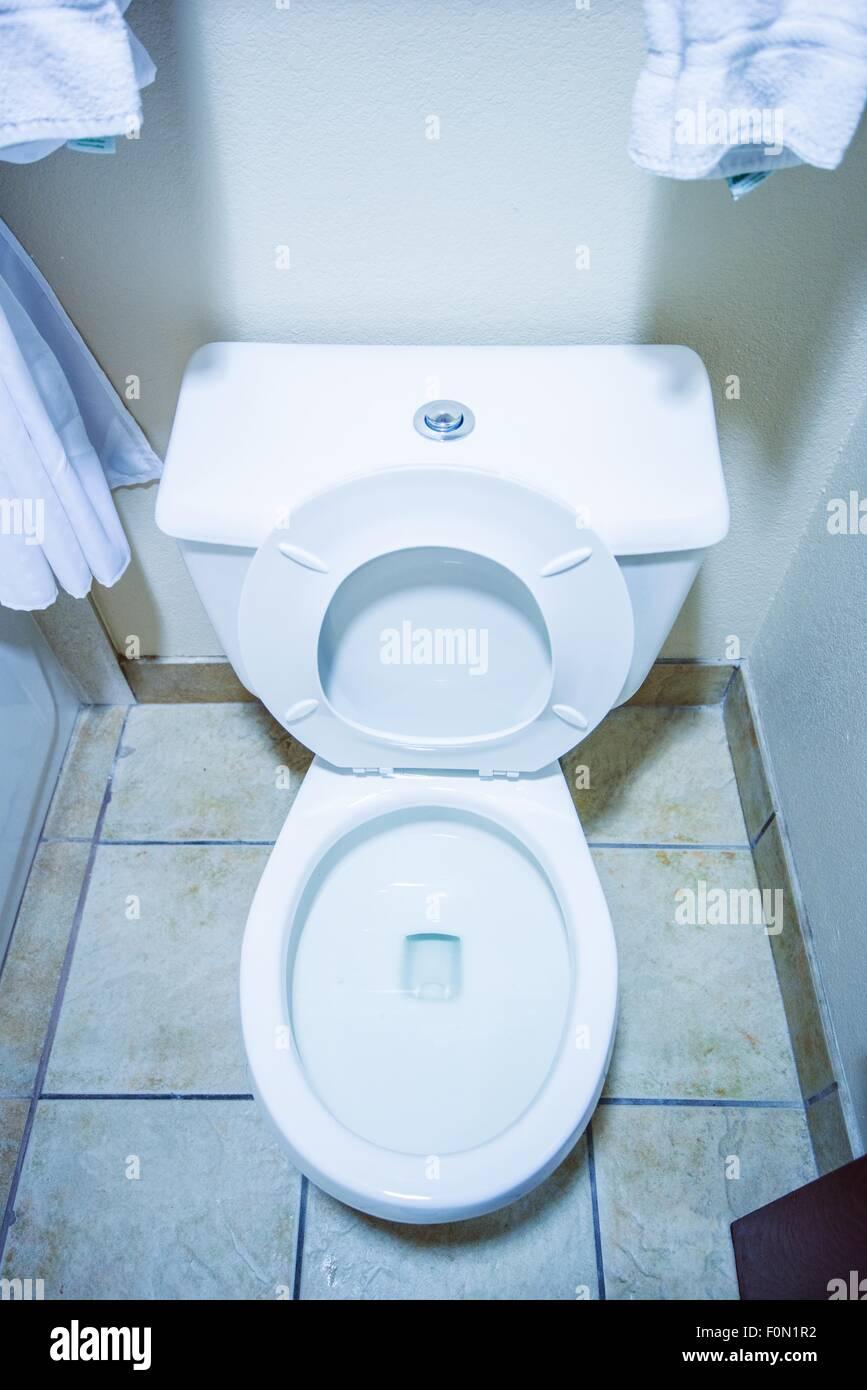 Pulire la tazza igienica in un piccolo bagno foto for Tazza bagno