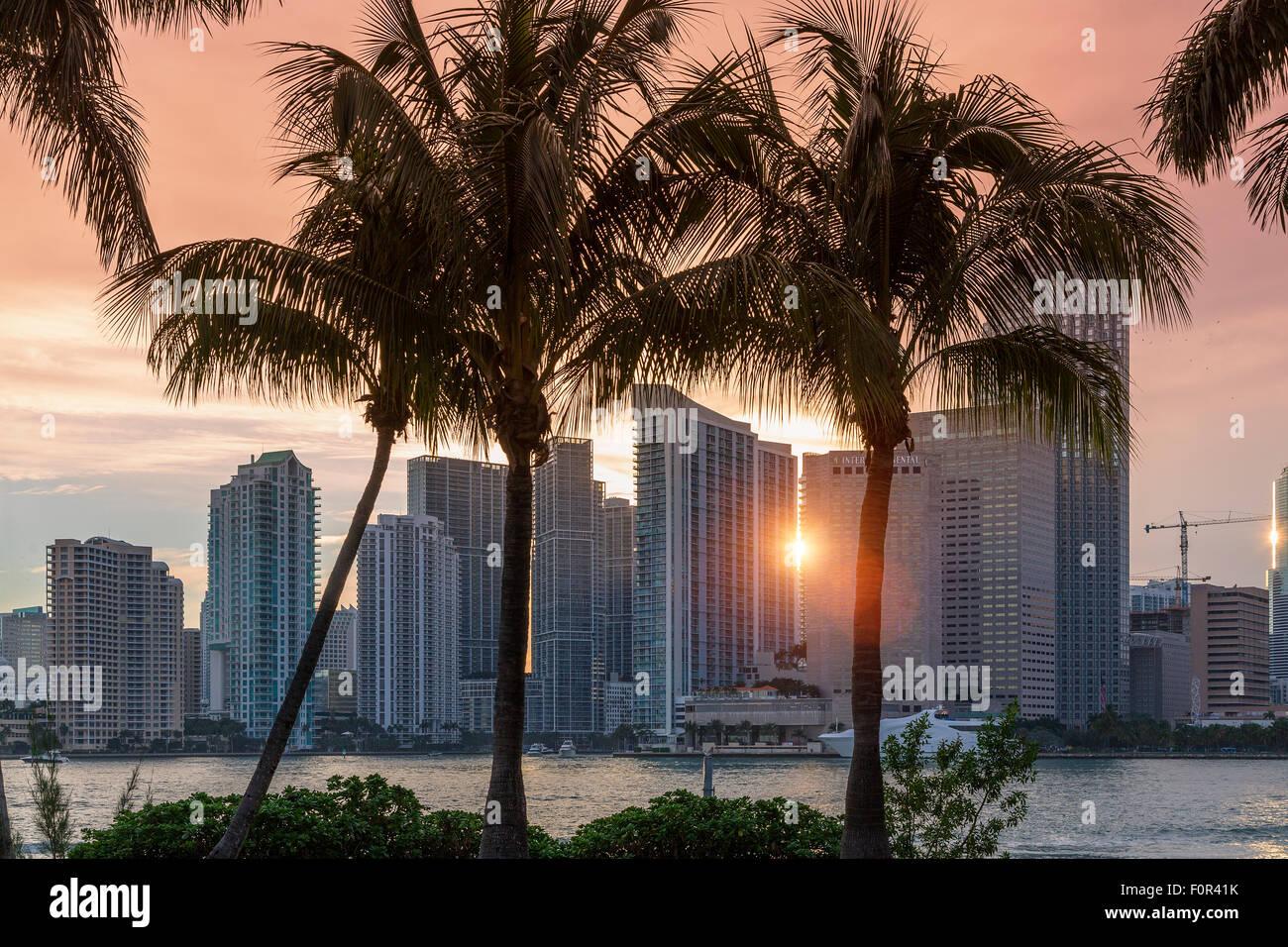 Florida, lo skyline di Miami al tramonto Immagini Stock