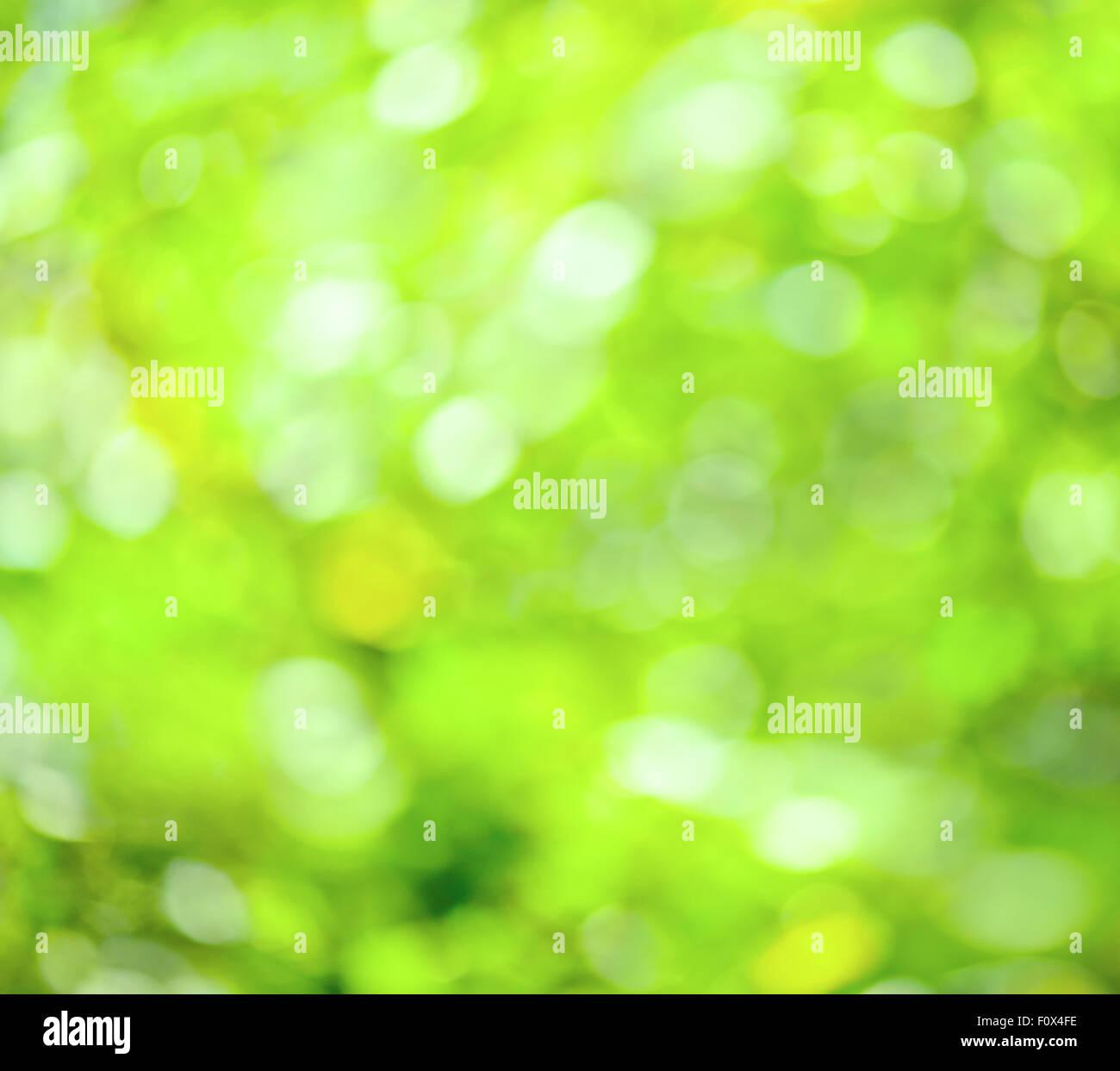 Abstract sfocati verde di sfocatura dello sfondo a molla Immagini Stock