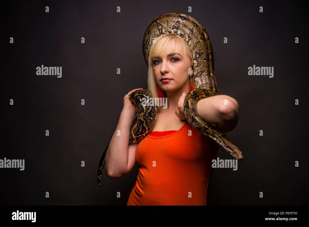 Una giovane donna ragazza persona di sesso femminile in posa con un serpente python avvolto attorno alla sua testa Immagini Stock