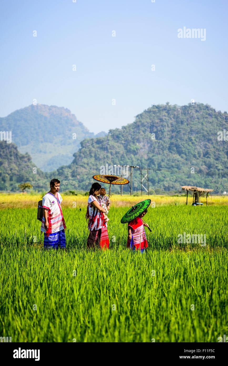 Famiglia asiatica camminare sotto gli ombrelloni in campo rurale Immagini Stock