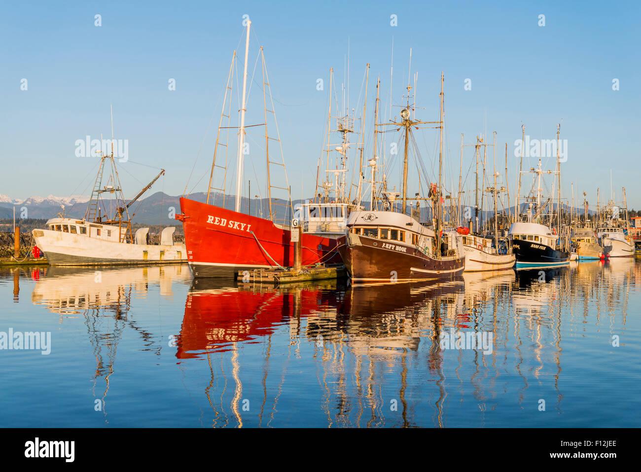 Barche da pesca, Comox Harbour, l'isola di Vancouver, British Columbia, Canada Foto Stock