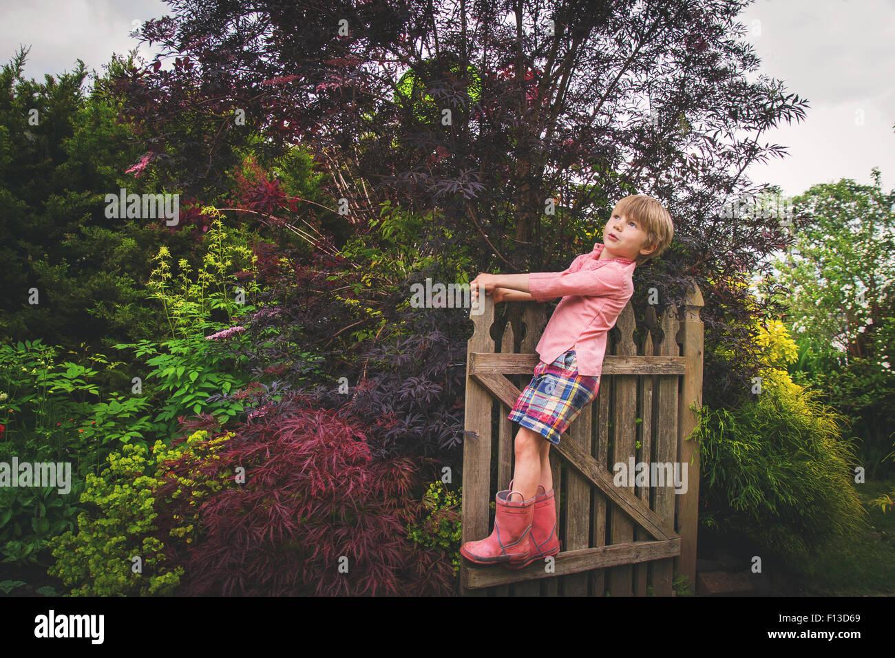 Ritratto di un ragazzo in piedi sul cancello di legno, guardando verso l'alto Immagini Stock