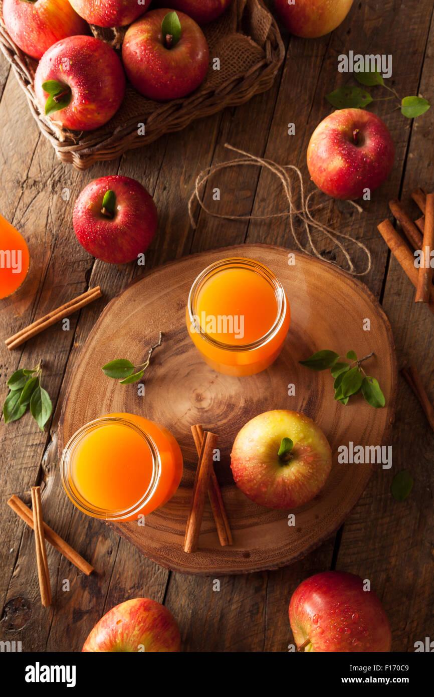 Arancione organico Sidro di mela con cannella e spezie Immagini Stock