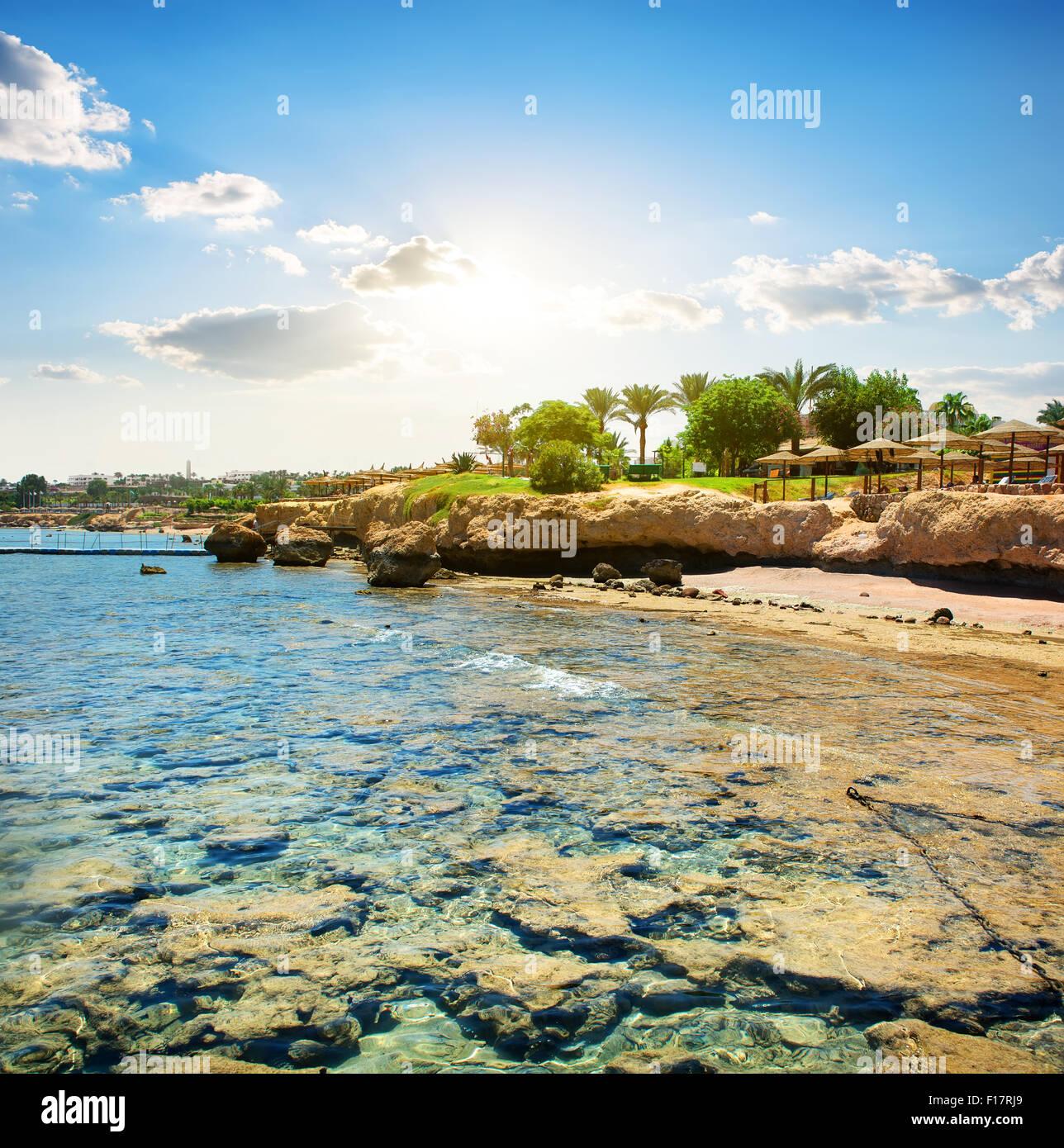 Le barriere coralline sulla spiaggia vicino a hotel Immagini Stock