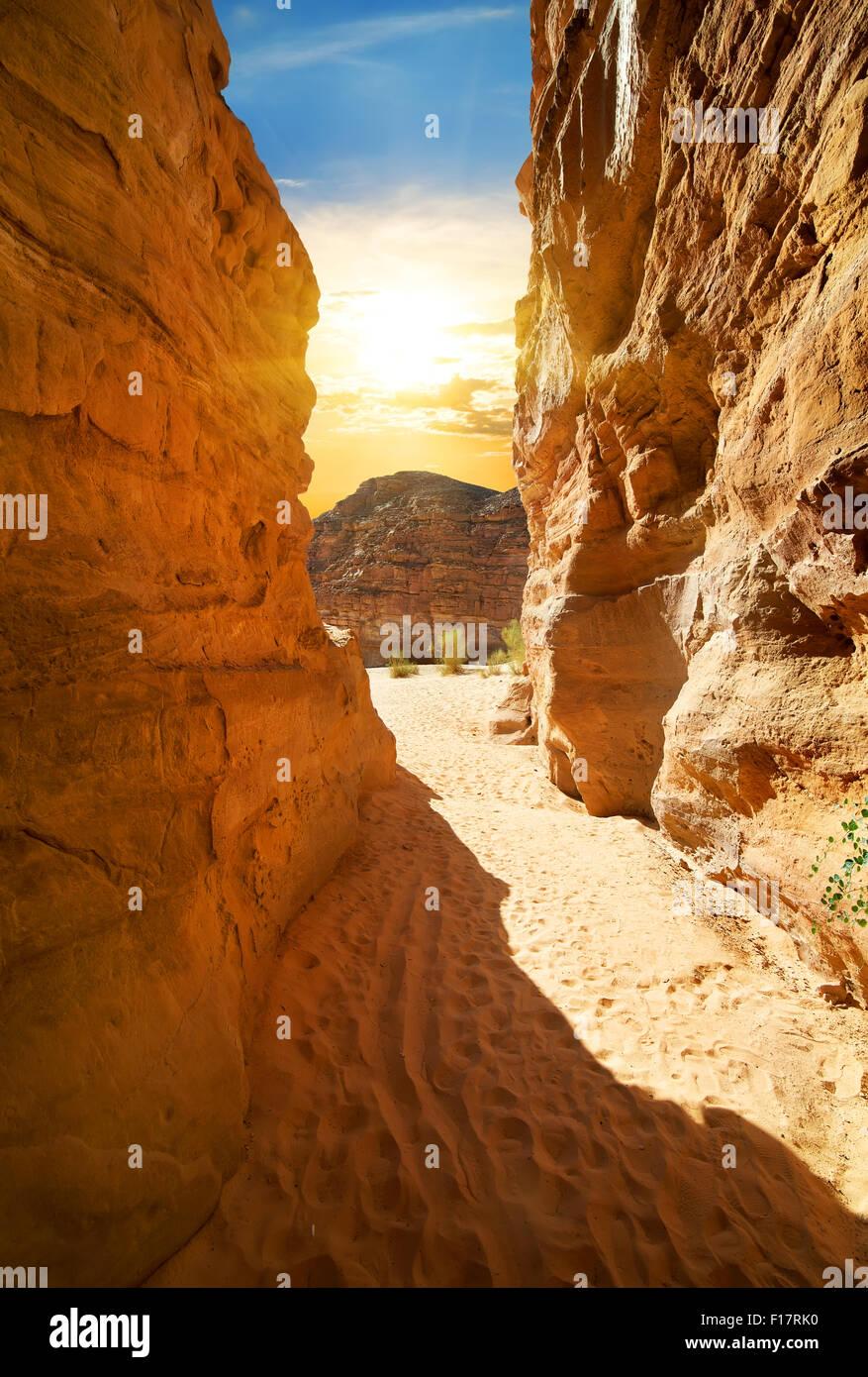 Roccioso canyon nel deserto alla giornata di sole Immagini Stock