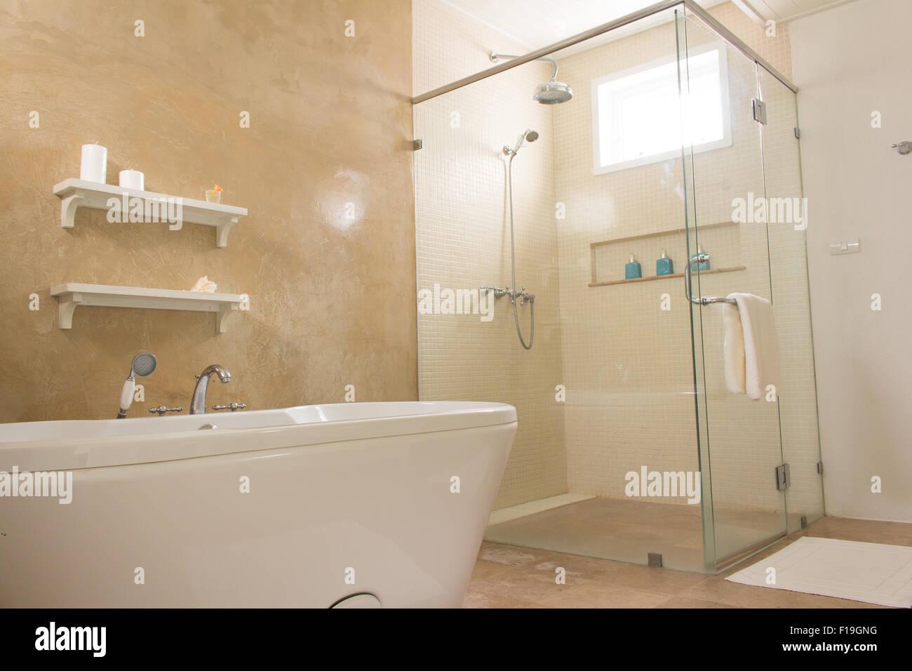Svuotare il bagno con parete loft stile vasca da bagno doccia e wc