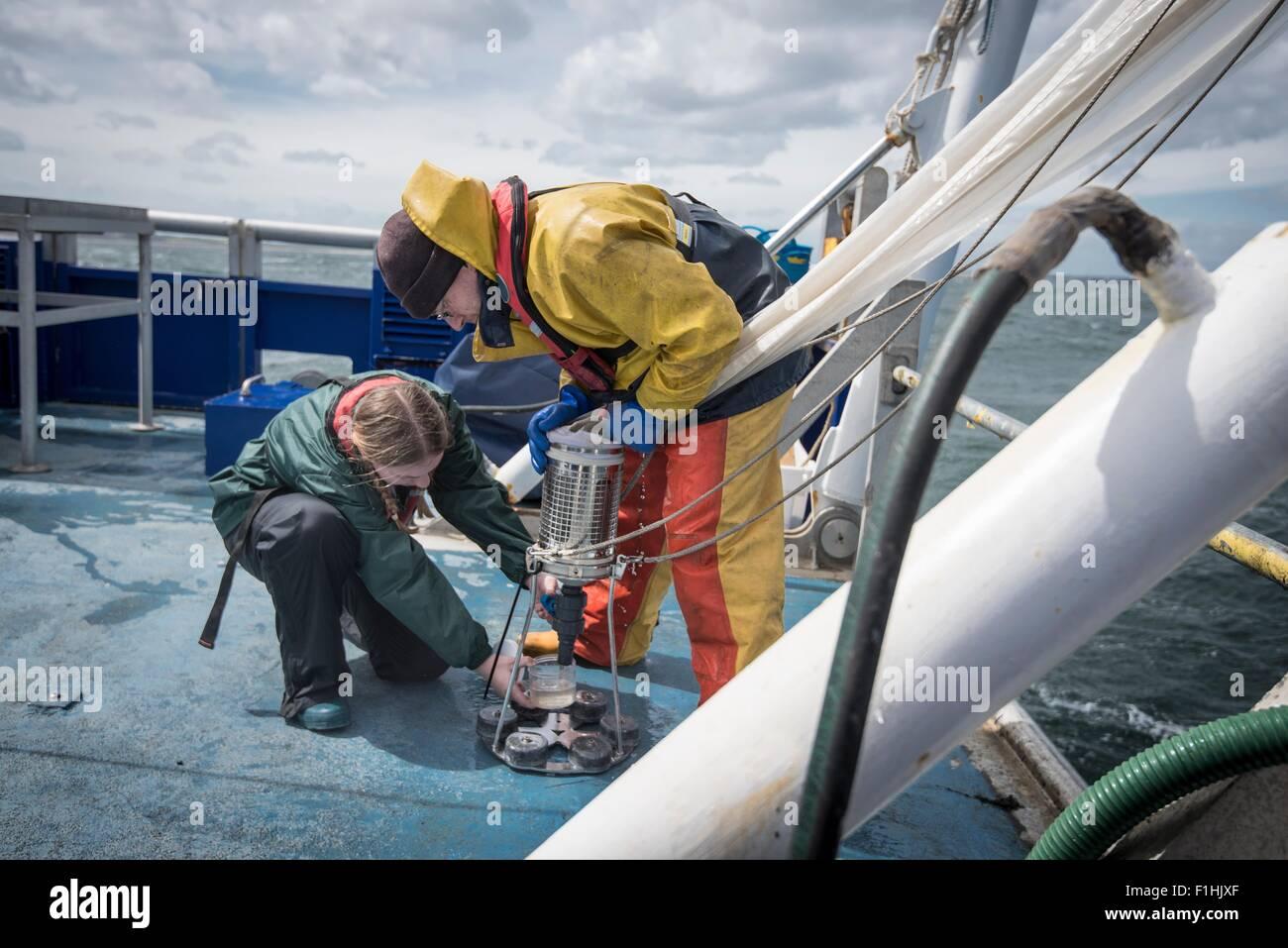 Il biologo marino prendendo campioni di plancton da net sulla nave per la ricerca Immagini Stock