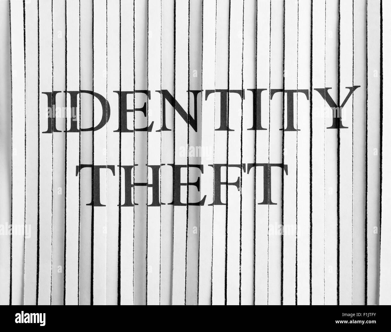 La carta tagliuzzata con il furto di identità Immagini Stock