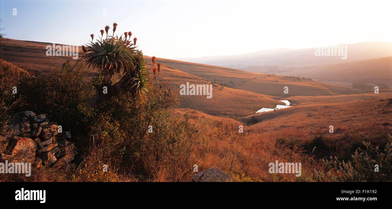 New Scenic 5 posti da Dullstroom Mpumalanga, Sud Africa Immagini Stock
