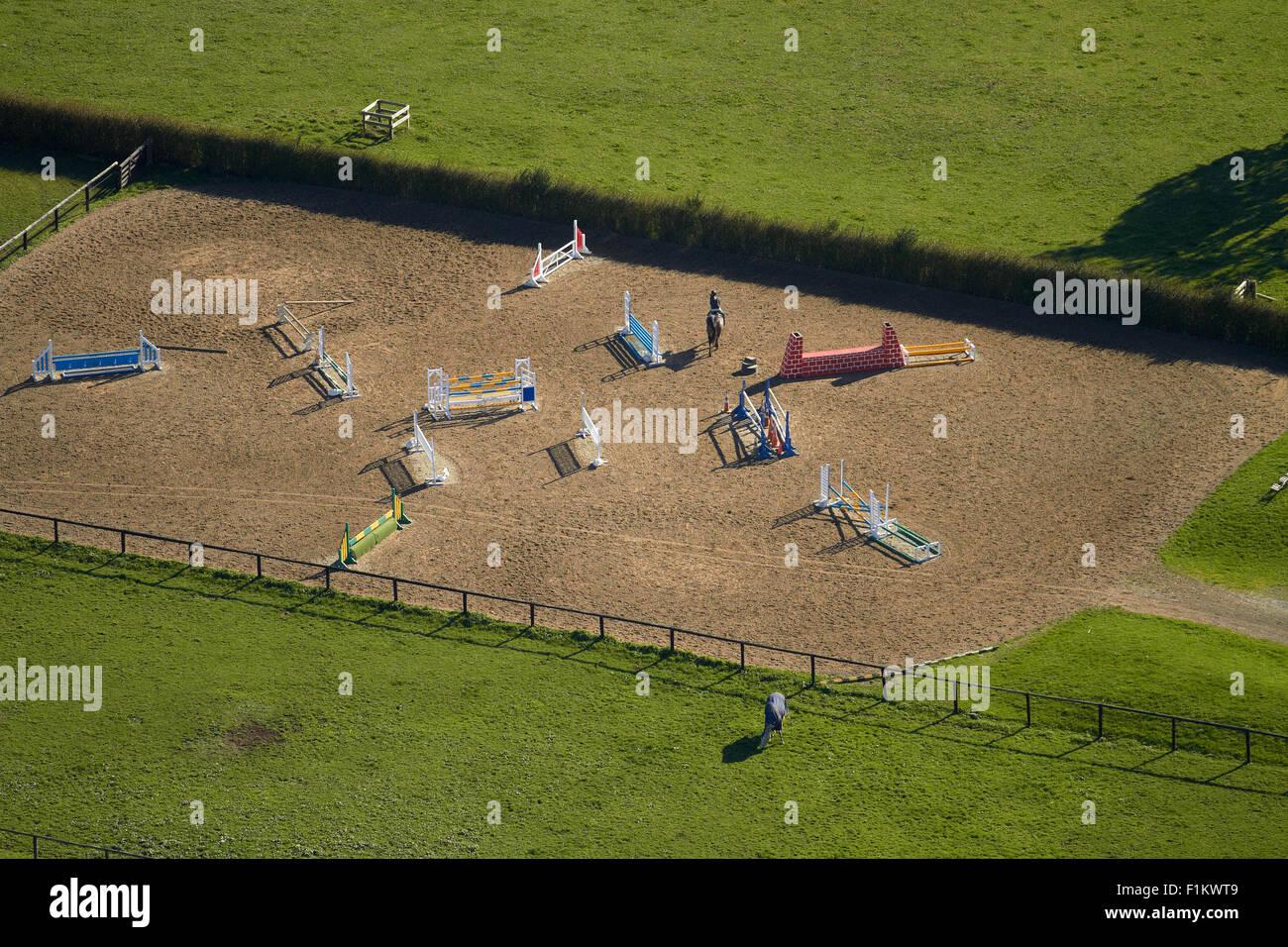 Cavaliere e cavallo su show jumping corso, Ardmore, South Auckland, Isola del nord, Nuova Zelanda - aerial Immagini Stock