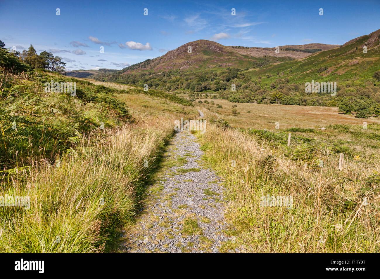 La altipiani del Sud così come viene eseguito attraverso il Galloway colline in Glentrool, Dumfries and Galloway, Immagini Stock
