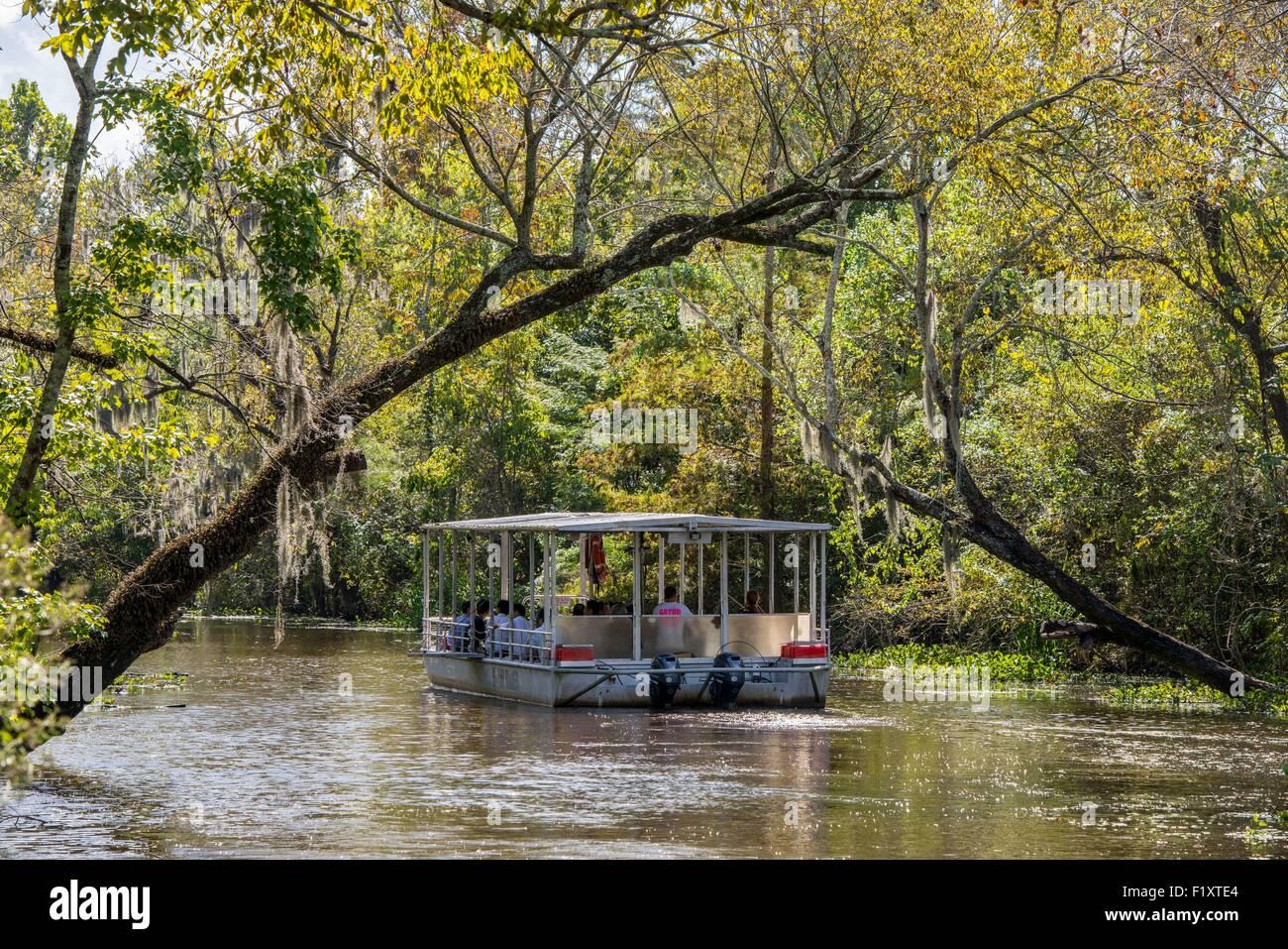 Stati Uniti, Louisiana, La Place, fondo piatto in barca per visitare il Bayou della palude Manchac Immagini Stock