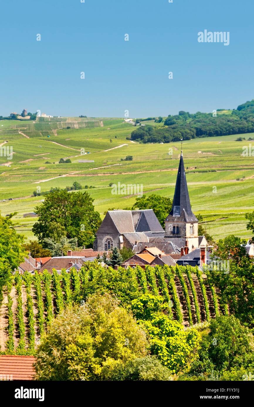 Francia, Marne, Rilly la Montagne Immagini Stock