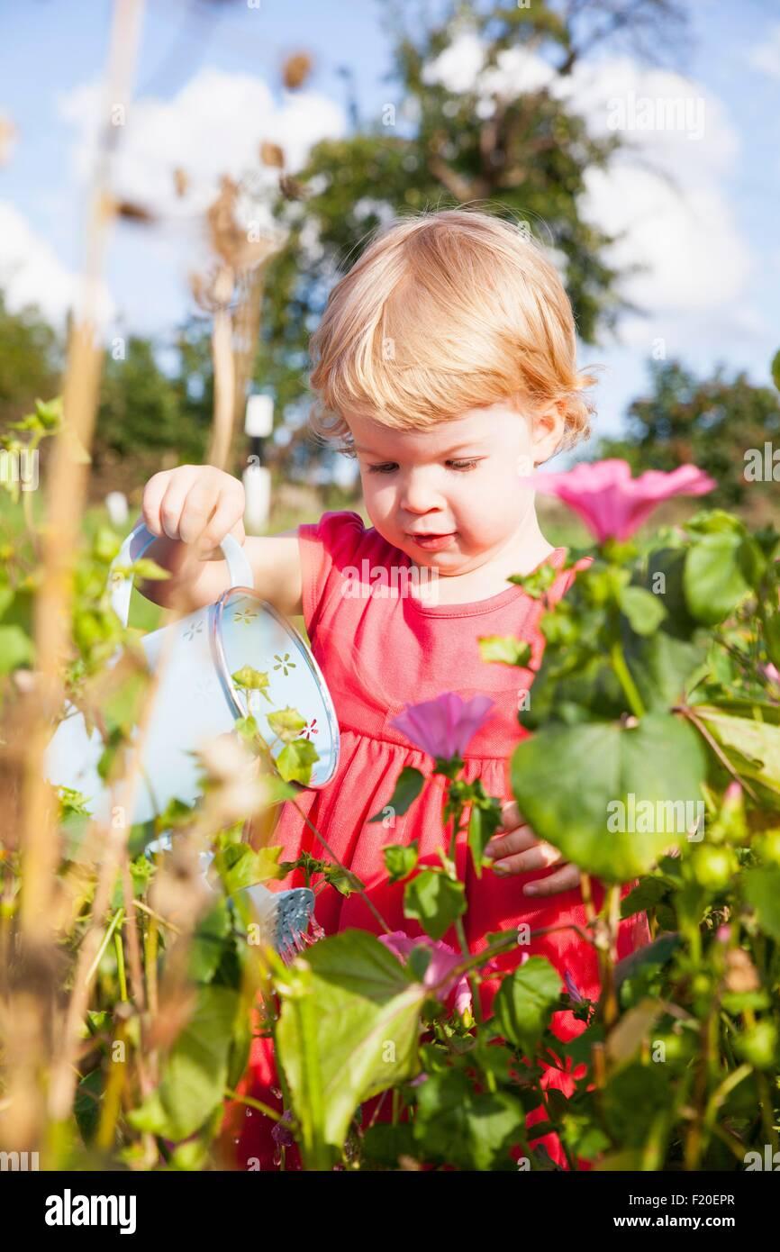 Femmina irrigazione toddler fiori nel campo dei fiori Immagini Stock