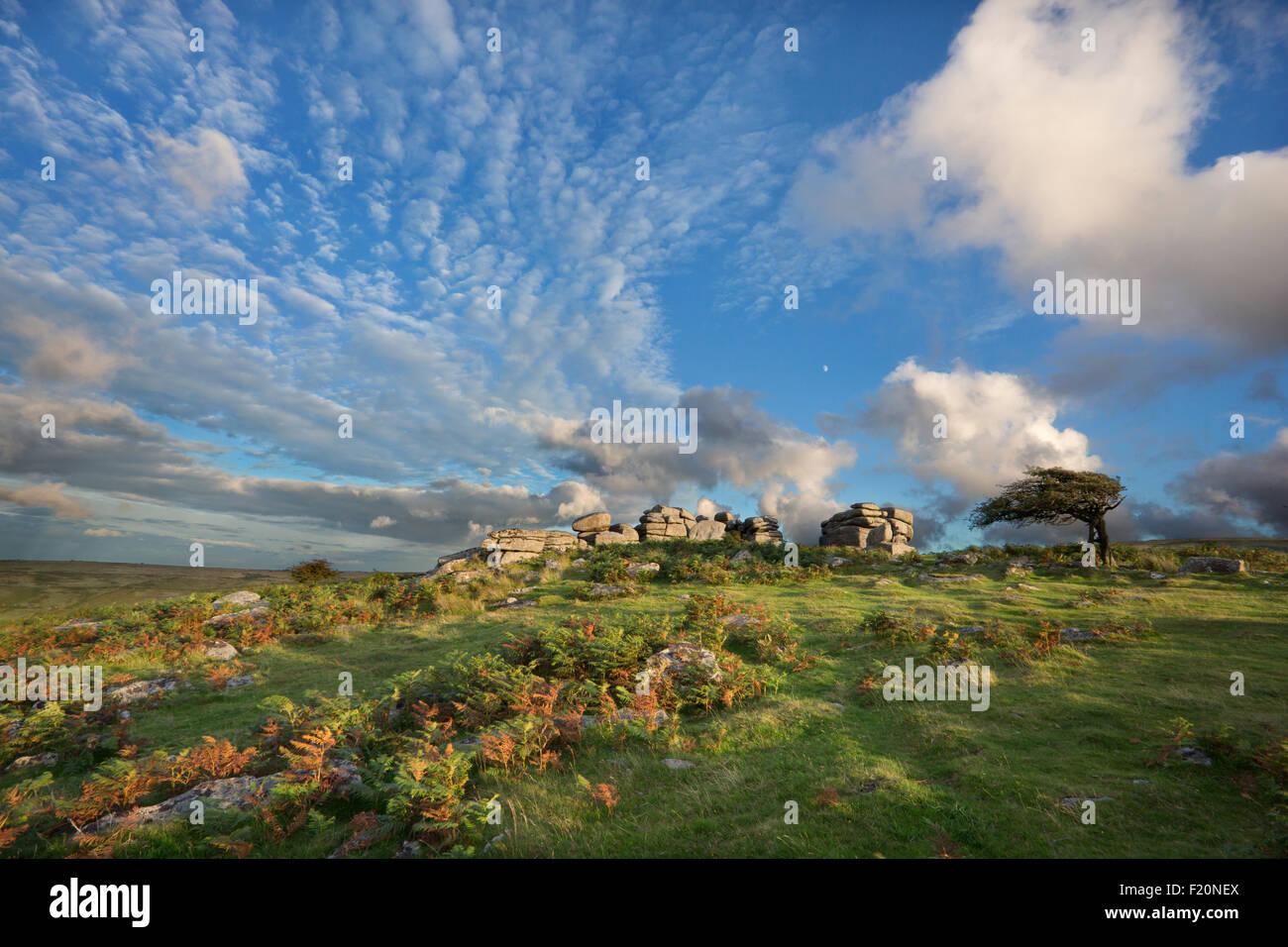 Combestone Tor nel Parco Nazionale di Dartmoor, Devon, Regno Unito Immagini Stock
