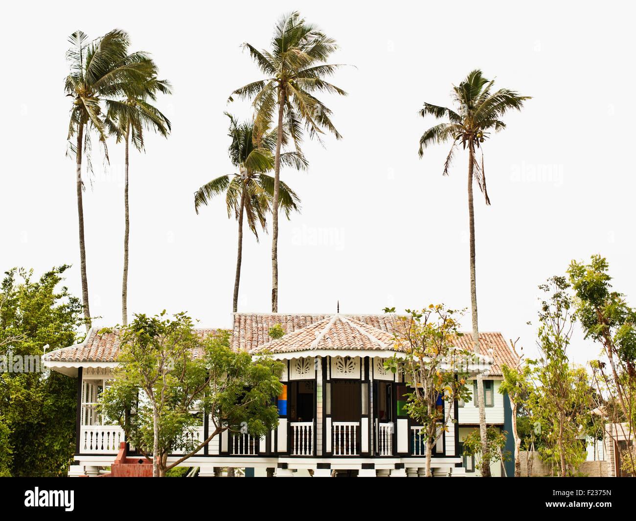 Esterno del Black & White House, Tempio albero a Bon Ton Resort. Il Langkawi, Malesia Immagini Stock