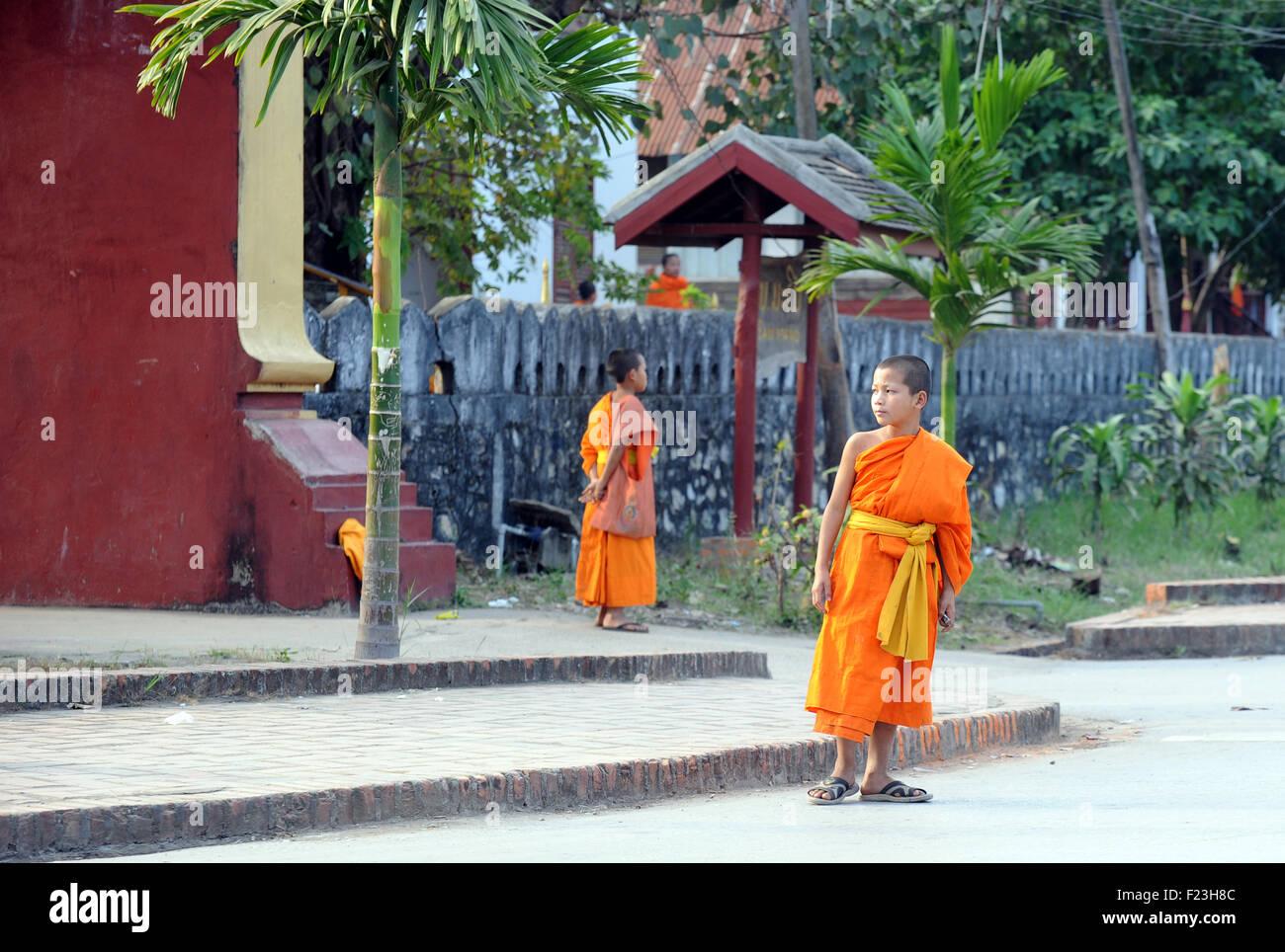 Lao novizio monaci in abiti dello zafferano Luang Prabang, Laos Immagini Stock