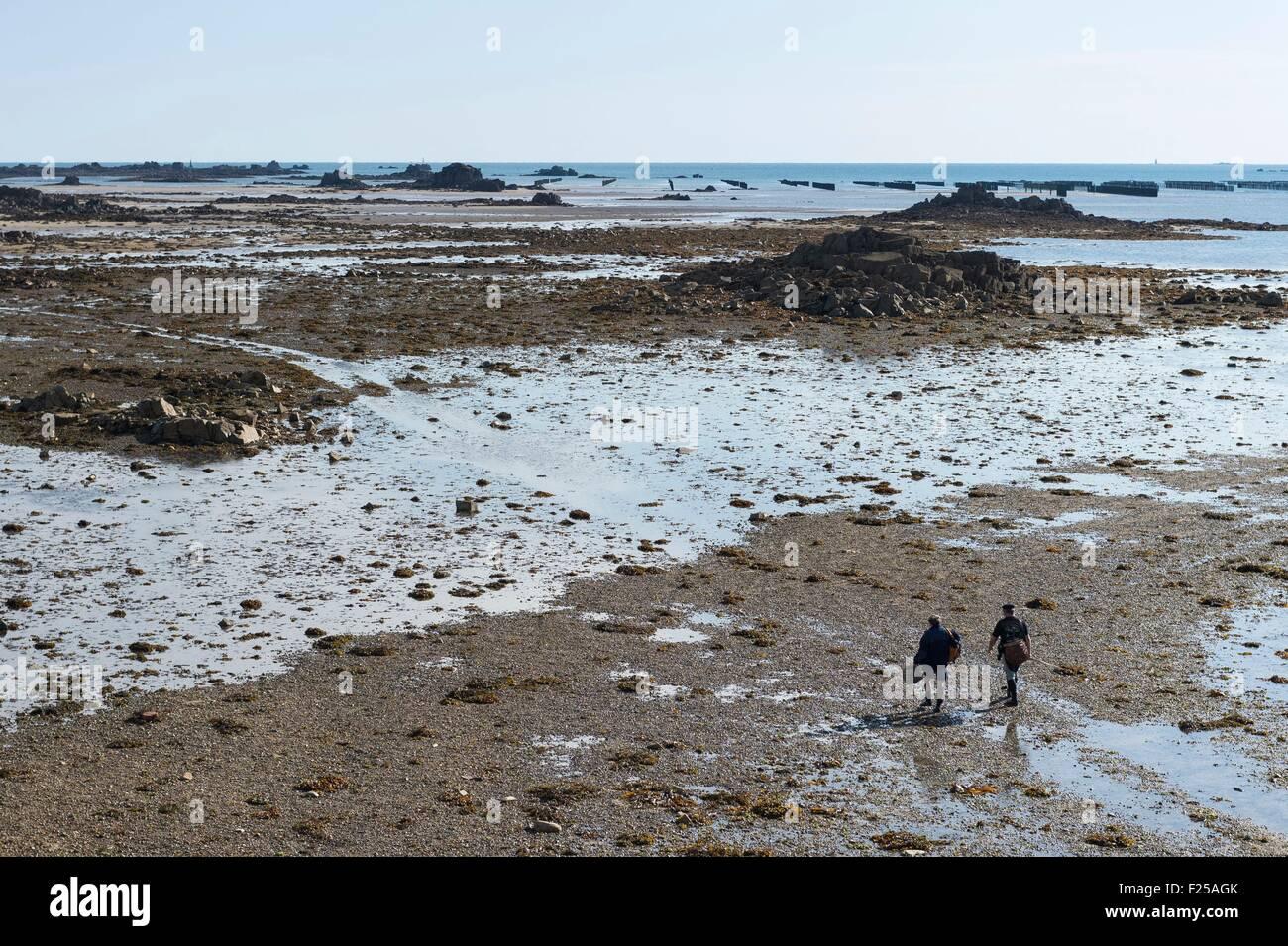 Francia, Cotes d'Armor, Pleubian, angling lungo il Sillon di Talbert Immagini Stock