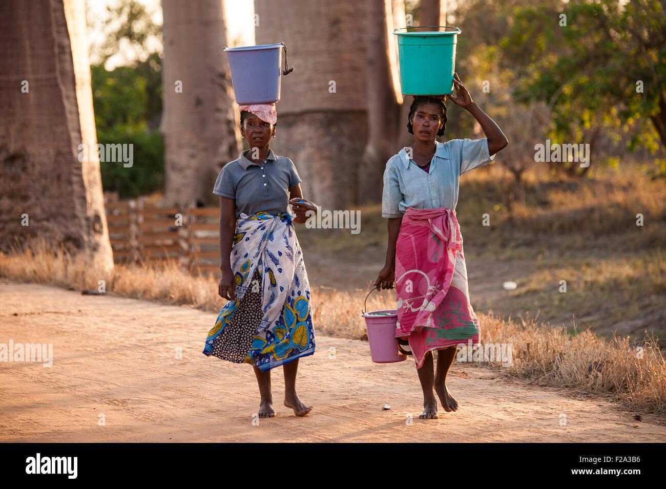 Due donne che portano una benna sulla loro testa in Baobaballee, Morondava, Madagascar Immagini Stock