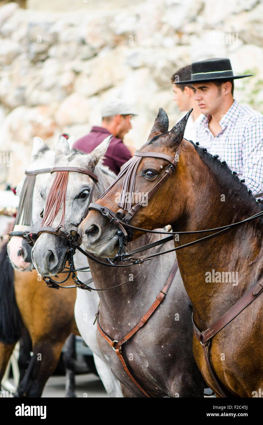 fashion style tessuti pregiati come ottenere Gli uomini su cavalli indossando cappelli Cordobes in ...