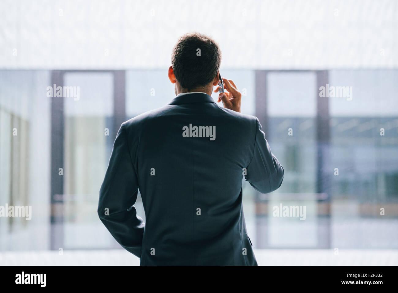 Vista posteriore di imprenditore parlando al telefono Immagini Stock