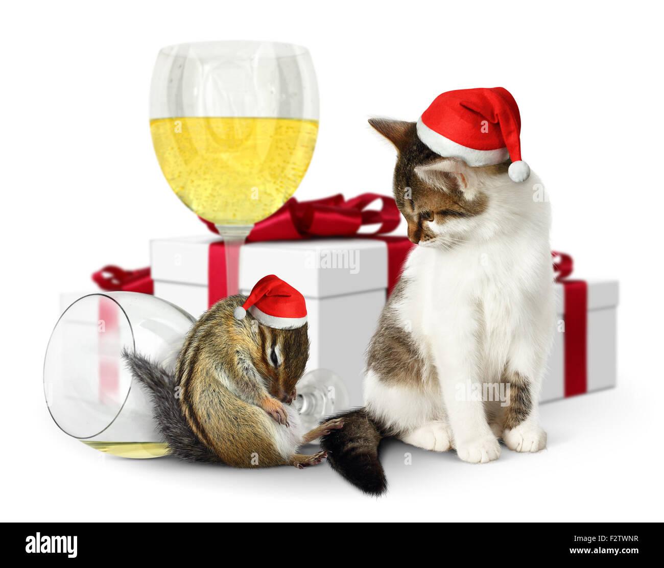 Concetto Di Natale Ubriaco Scoiattolo E Gatto Con Il Cappello Da