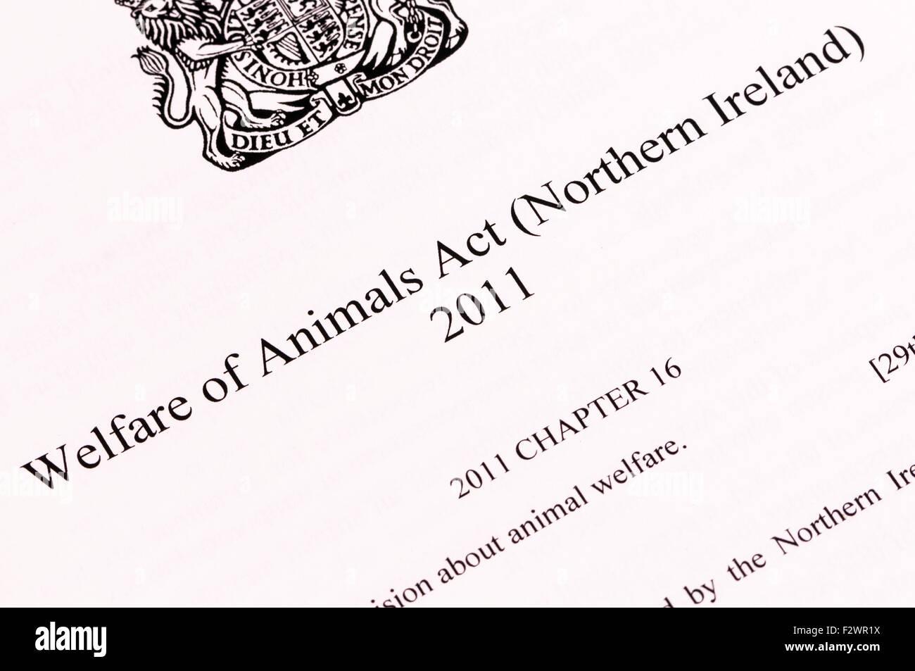 Benessere degli animali Act (Northern Ireland) Immagini Stock