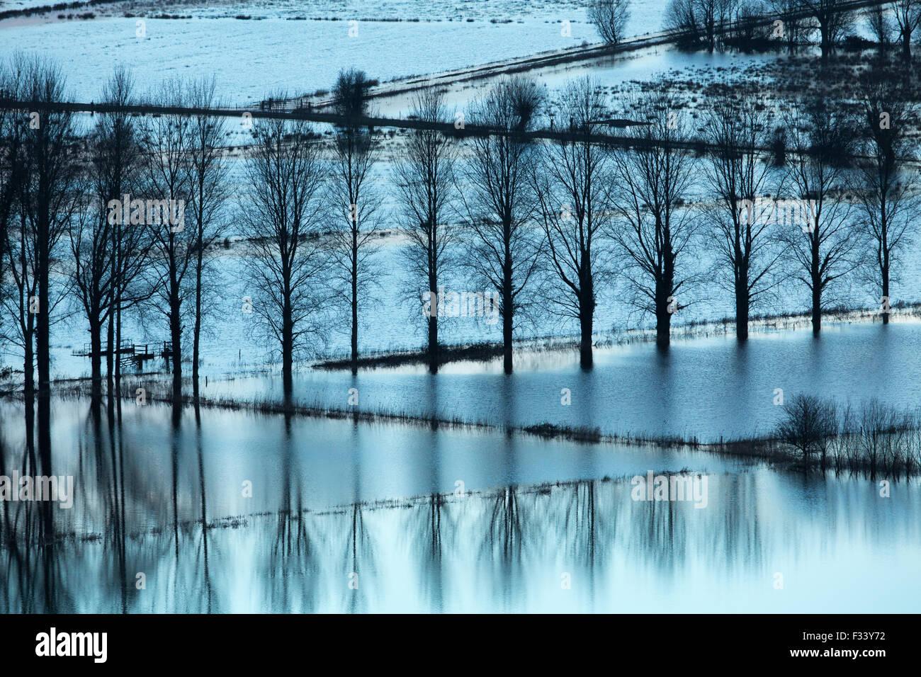 Inondazioni nr Muchelney, Somerset, Inghilterra, Regno Unito Immagini Stock