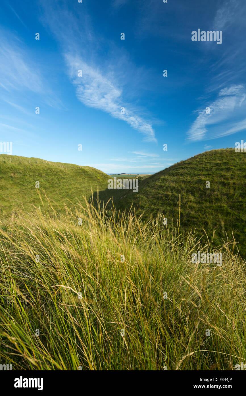 La western bastioni di Maiden Castle, un'età del ferro hill fort vicino a Dorchester Dorset, England, Regno Unito Foto Stock