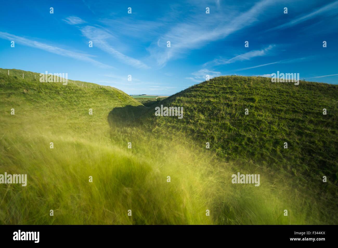 La western bastioni di Maiden Castle, un'età del ferro hill fort vicino a Dorchester Dorset, England, Regno Immagini Stock
