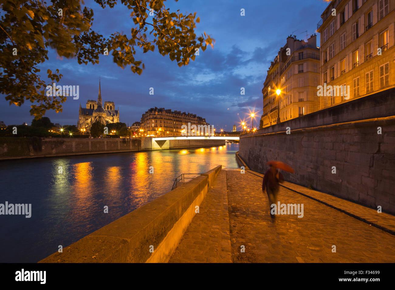 La cattedrale di Notre Dame e l'Île de la Cité da Ile St Louis di notte, Parigi, Francia Immagini Stock