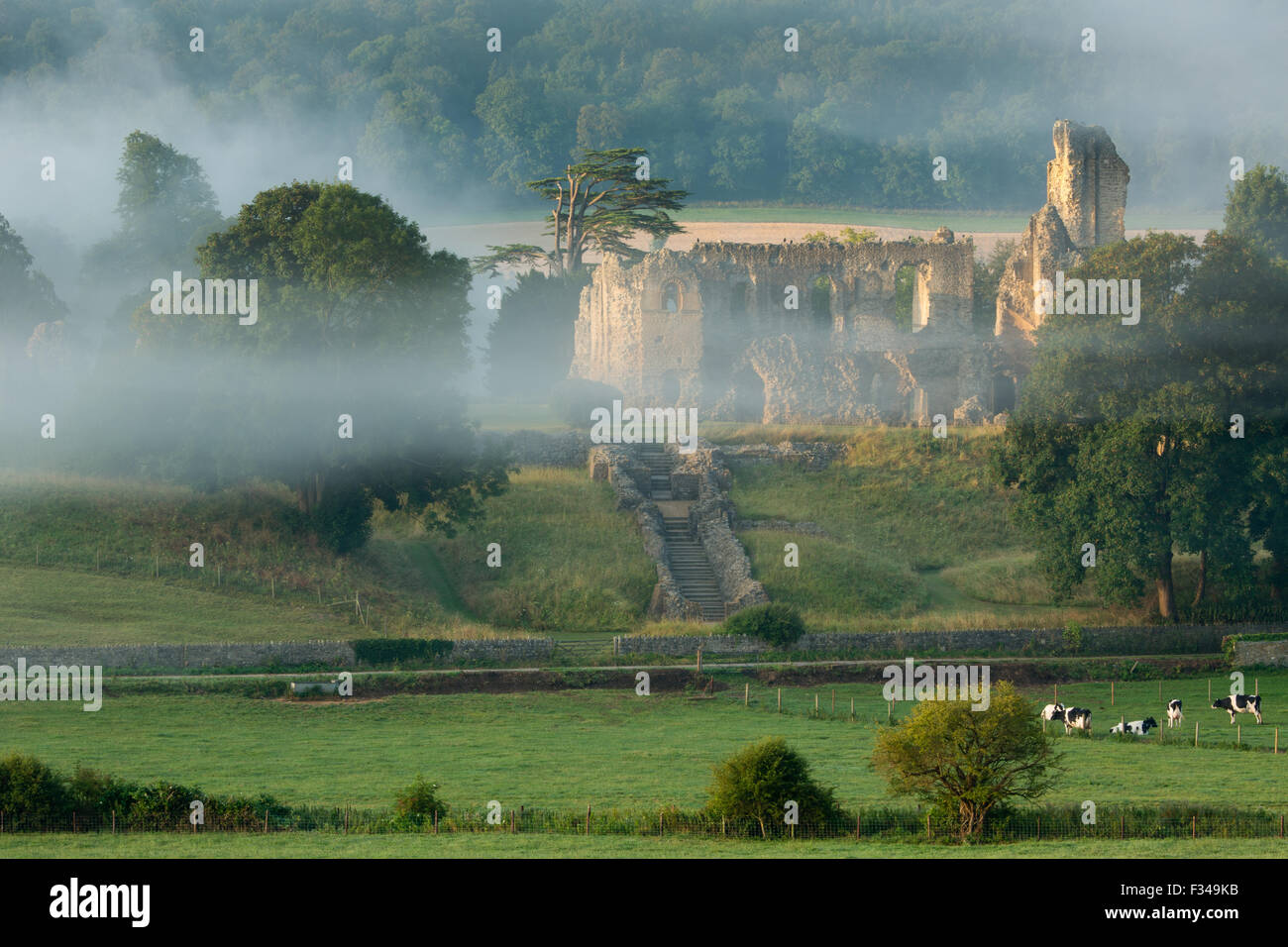 Old Sherborne Castle, Sherborne, Dorset, England, Regno Unito Foto Stock