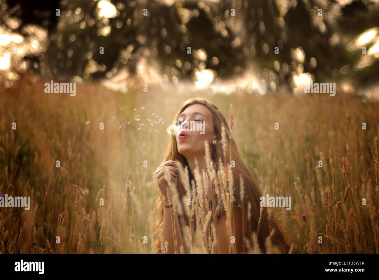 Bella ragazza nei campi soffia un dente di leone Immagini Stock