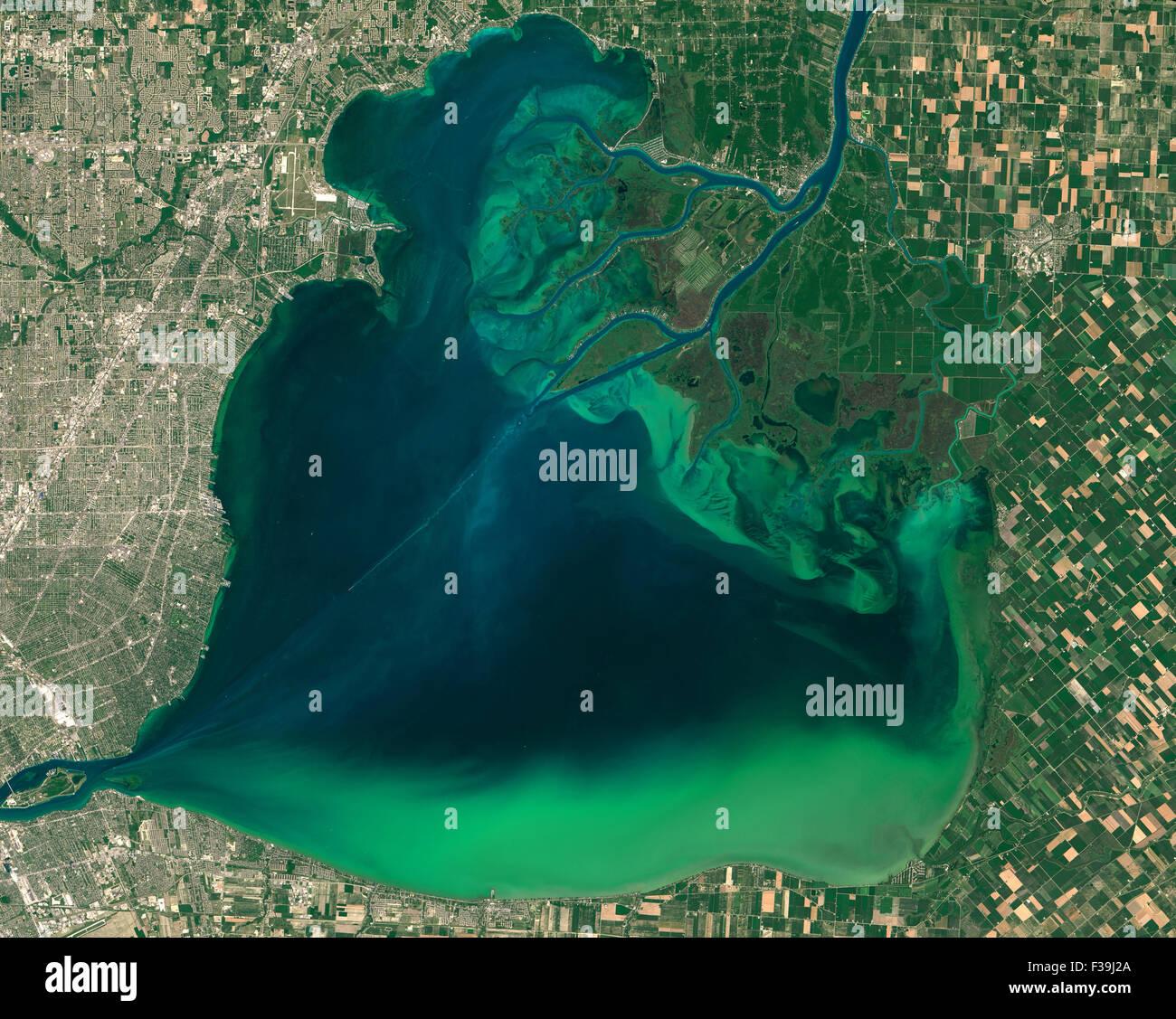 Fioriture algali intorno ai grandi laghi, visibile come volute di verde in questa immagine del lago di St. Clair Immagini Stock