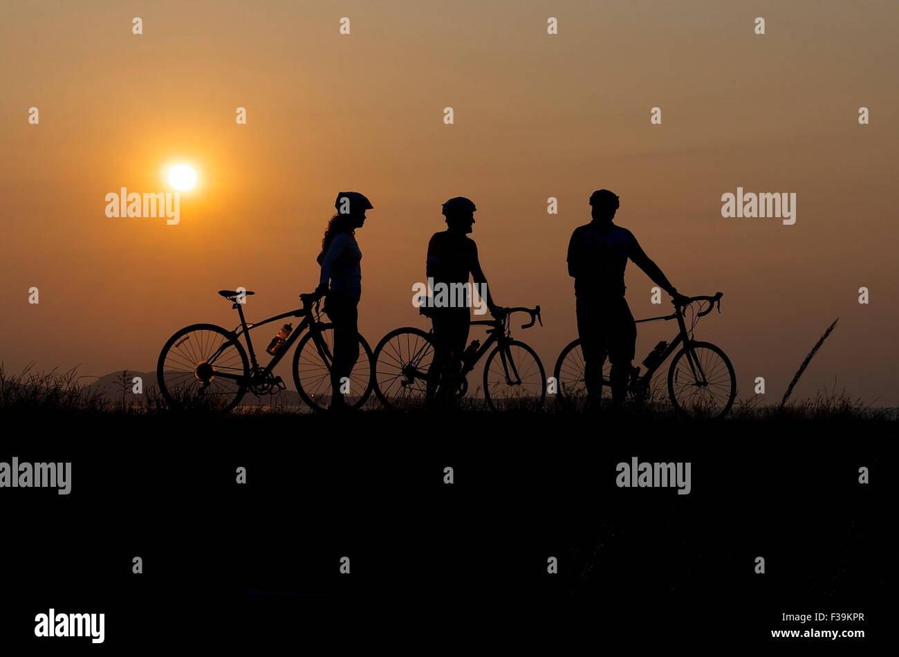 Silhouette di tre ciclisti al tramonto Immagini Stock